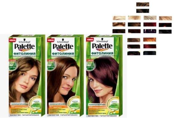 Палитра краски для волос Палет Фитолиния