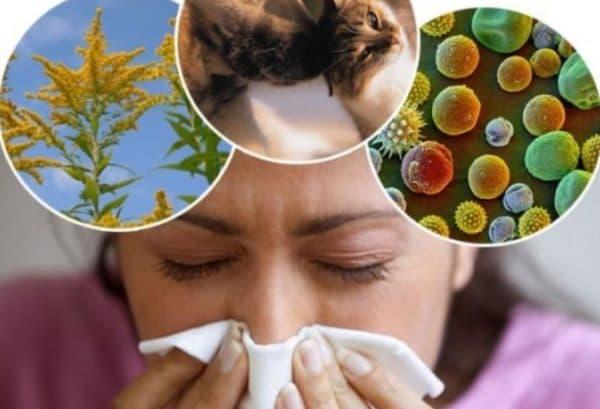Факторы вызывающие аллергию на лице