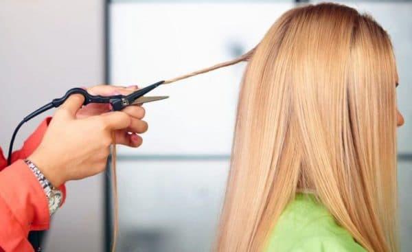 Жгутики помогут увидеть и устранить проблему секущихся волос по всей длине